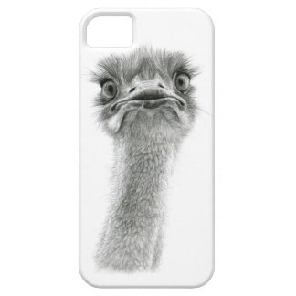 Ostrich expression sk053 iPhone 5 cases