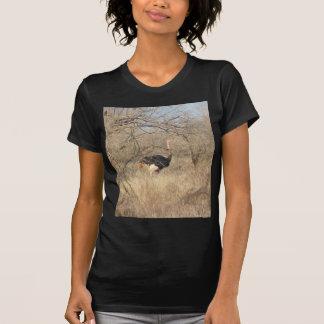 Ostrich T-Shirt, African Safari Collection T-Shirt