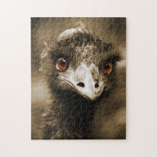Ostriches Look photo puzzle