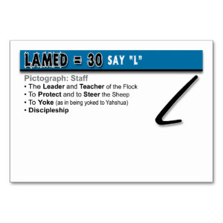 Otiot Flash Cards: 12 of 22 Table Card