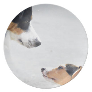our best friends on four paws - serie 001 party plates