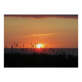 Outer Banks Sunrise through the Sea Oats Poster
