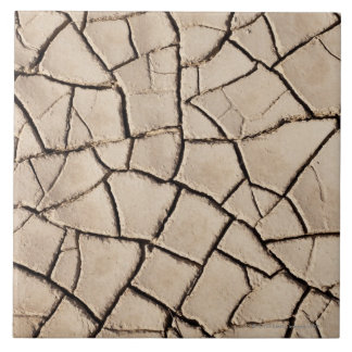overhead view of cracked earth on a desert tile