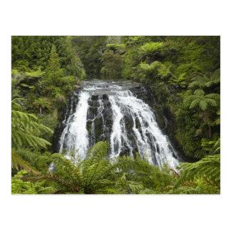 Owharoa Falls, Karangahake Gorge, near Paeroa, Postcard