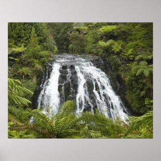 Owharoa Falls, Karangahake Gorge, near Paeroa, Poster