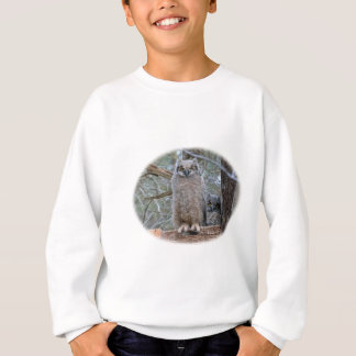Owl Babies in Basket Sweatshirt