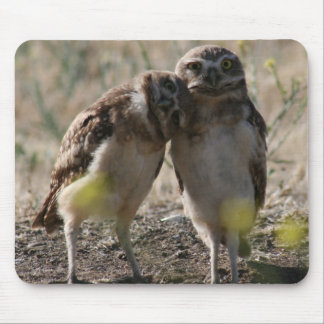 Owl couple mouse pad