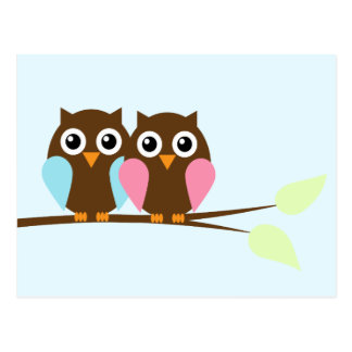 Owl couple on a branch postcards
