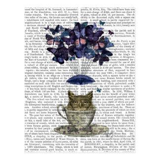 Owl In Teacup Postcard