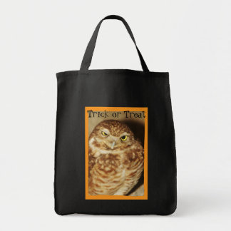 Owl of a Good Time Trick or Treat Halloween Bag