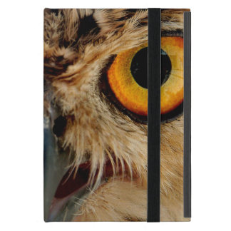 Owls Eyes Case For iPad Mini