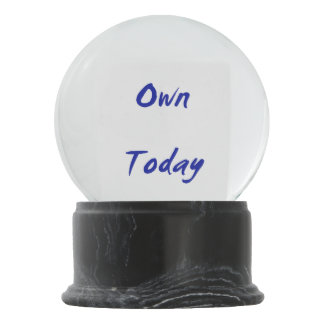 Own Today Snow Globes