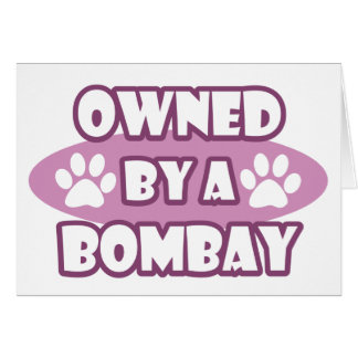 Owned by a Bombay Card