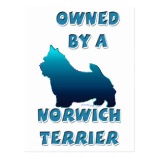 Owned by a Norwich Terrier Postcard