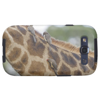 Oxpeckers on Giraffe, Kruger National Park, Samsung Galaxy SIII Cover