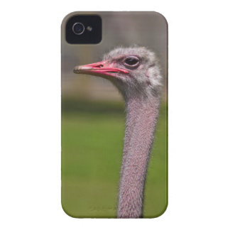 Ozzie iPhone 4 Case