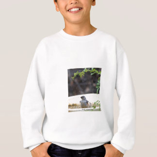 P5233038bird bath sweatshirt