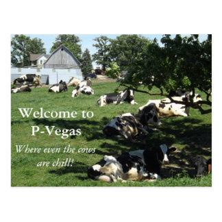 P-Vegas Platteville, Wisconsin Postcard