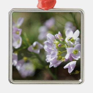 © P Wherrell Pretty flowers Lady's smock photo Silver-Colored Square Decoration
