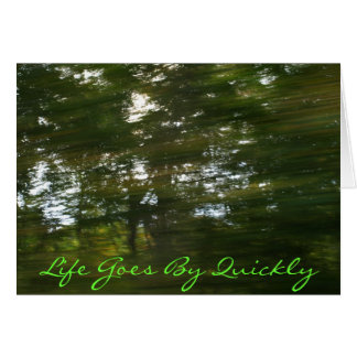 PA160016, Life Goes By Quickly Greeting Card