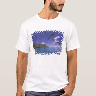 Pacific, Micronesia, Palau, Bottlenose 3 T-Shirt