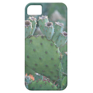 Paddle Cactus Barely There iPhone 5 Case