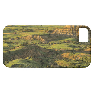 Painted Canyon After Storm in Theodore Roosevelt Barely There iPhone 5 Case