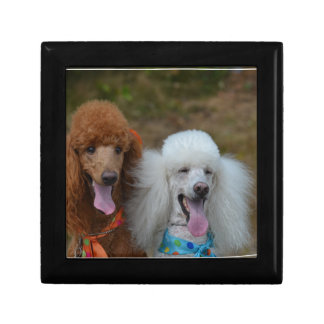 Pair of Poodles Gift Box