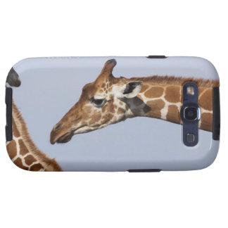 Pair of Reticulated Giraffes (Giraffa Samsung Galaxy S3 Case