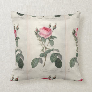 Pale pink vintage roses painting throw pillow