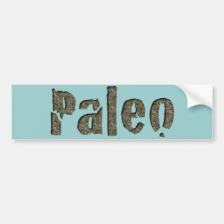 Paleo in Stone Bumper Sticker