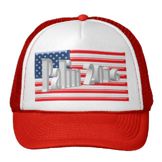 PALIN 2016 Cap, White 3D, Old Glory Cap