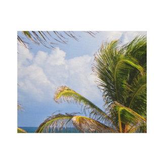 Palm Framed Canvas Print