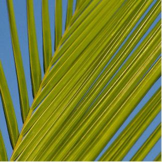Palm Leaf Acrylic Cut Out