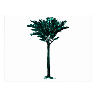 Palm Tree 2 Cyan The MUSEUM Zazzle Gifts Postcards