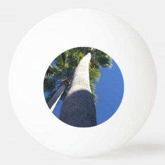Palm tree ping pong ball