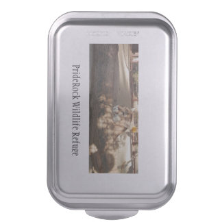 Pan with a picture of our cougar Casey! Cake Pan