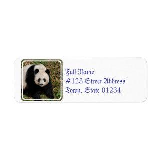panda-92 return address label