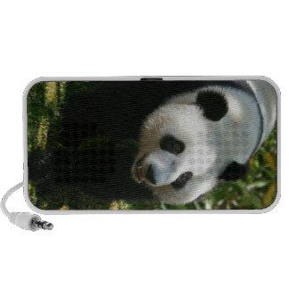 Panda Bear Mini Speaker