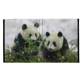 Panda Bears Caseable Universal iPad Folio Cases