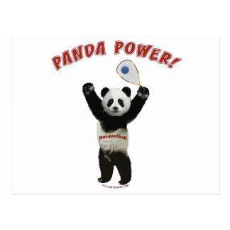 Panda Power Racquetball Postcard