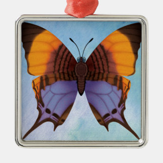 Pansy Daggerwing Butterfly Silver-Colored Square Decoration