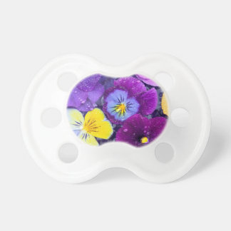 Pansy flowers floating in bird bath with dew 2 dummy