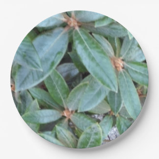 Paper plate depicting foliage 9 inch paper plate