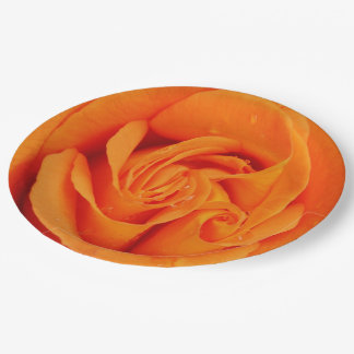 Paper plate retro Orange rose abstract flower 9 Inch Paper Plate