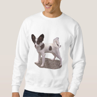 Papillon Dog Sweatshirt