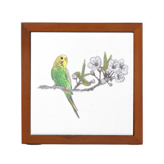 Parakeet on Branch Desk Organiser