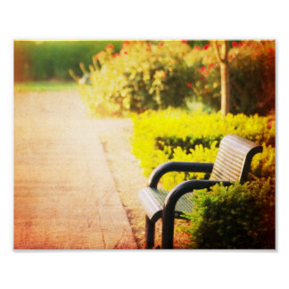 """Park Bench"" Fine Art Print"