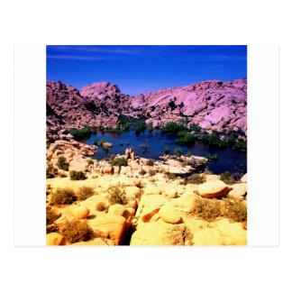 Park Vivid Vista Joshua Tree California Postcard