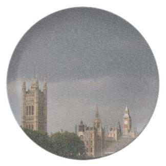 Parliament Party Plates